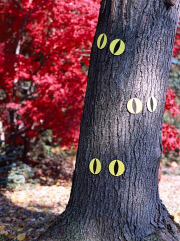 glowing-eyes-on-tree.jpg