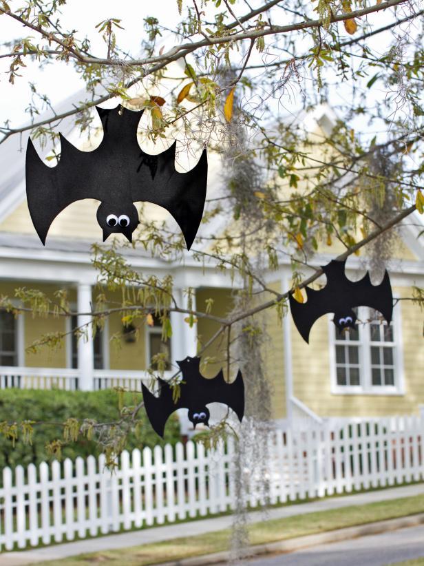 hanging-bats-outdoor.jpeg