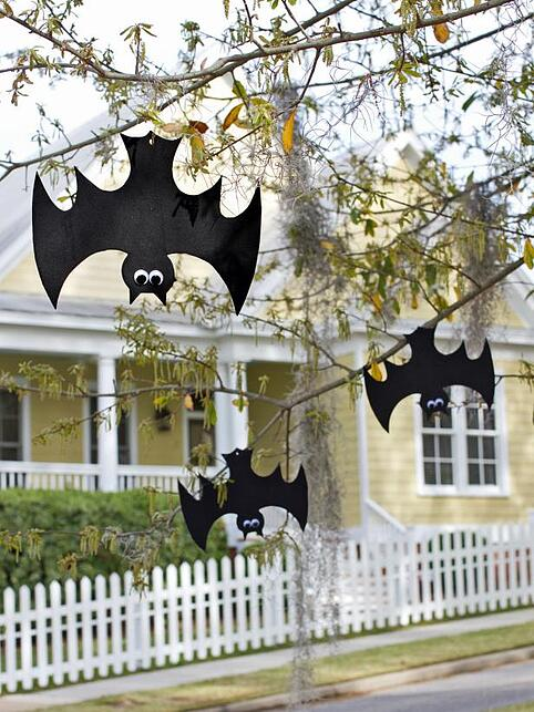hanging-bats-outdoor.jpeg